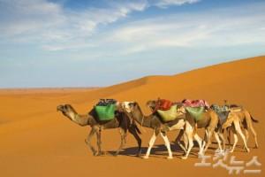 아프리카와 유럽, 이슬람 문화까지 모두 느낄 수 있는 튀니지에서 잊지 못할 여행의 추억을 만들어보자. (사진=웹투어 제공)