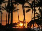 지루할 틈 없는 하와이 '호놀룰루' 허니문