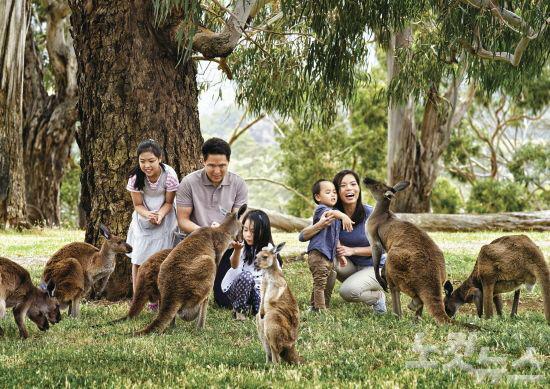 '호주 전문' 여행사가 선사하는 남다른 여행기억