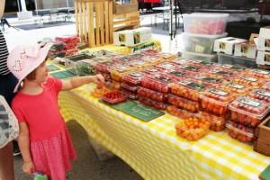 파머스 마켓에 선보인 각종 과일들은 대부분 직접 키워서 재배한 것들이 많다. 가격이 저렴한 것도 파머스 마켓의 장점. (사진=허니문리조트 제공)