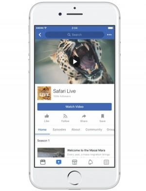 페이스북 쇼 페이지 '워치 비디오'