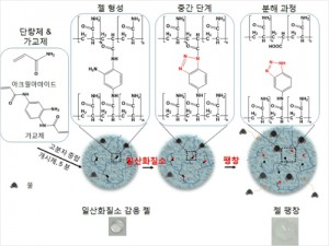 일산화질소에 선택적 반응하는 하이드로젤의 화학구조 및 개략도.(사진=기초과학연구원 제공)