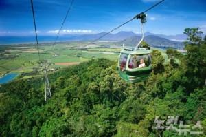 케언즈의 열대우림을 가장 쉽고 가까이 감상할 수 있는 스카이레일(사진=호주 관광청 제공)