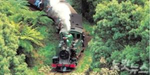 단데농 숲 & 퍼핑빌리를 이용하면 증기기관차를 타고 삼림욕을 즐기는 특이한 경험을 할 수 있다. (사진=머뭄투어 제공)