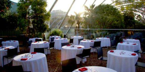코알라와 아침식사를 했다…호주 시드니 '먹방 여행'