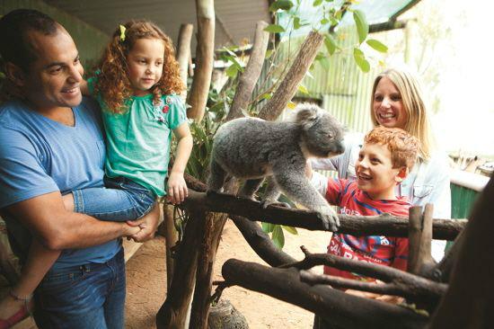 """""""우리끼리 자유롭고 편안하게"""" 호주 자유 패키지여행"""