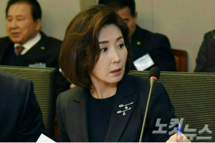 """나경원 """"선수 인생 걸렸는데 단일팀? '쇼잉'하지 말라"""""""