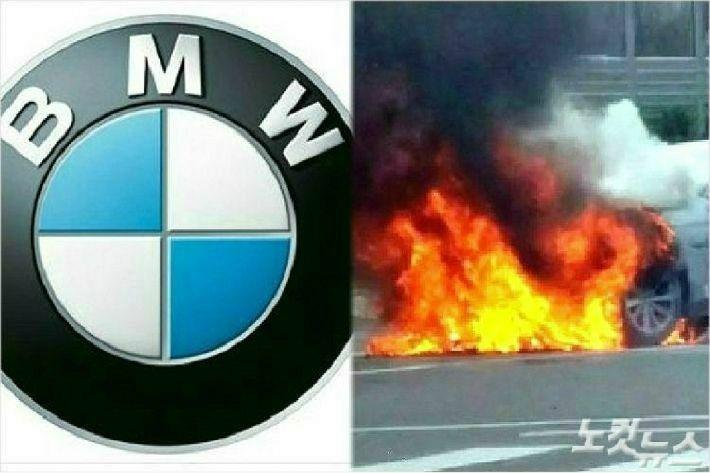 제주 운행정지 대상 BMW는 206대