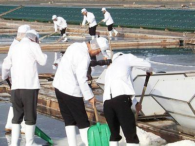 소금박람회서 천일염산업 발전 방안 논의
