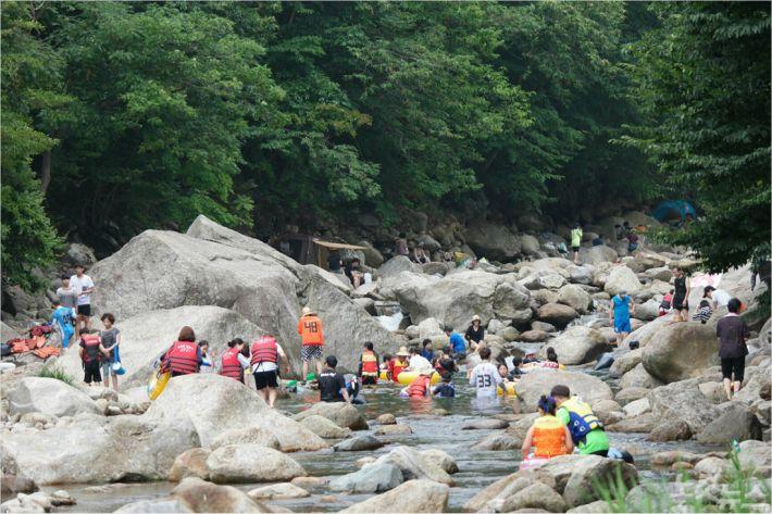 광양 백운산 옥룡면 동곡계곡에서 피서객들이 물놀이를 하고 있다.(사진=광양시 제공)