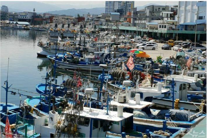 항구로 피항한 동해안 선박들. (사진=자료 사진)