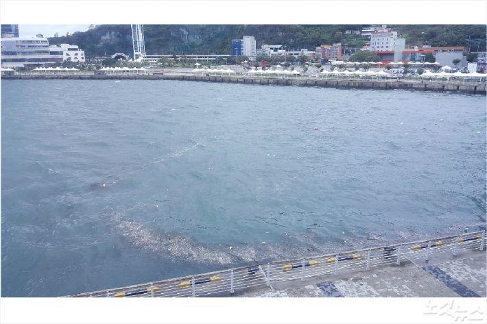 태풍이 북상한 5일 오후 여수 신항 해안가에 부유물이 밀려오고 있다(사진=고영호 기자)