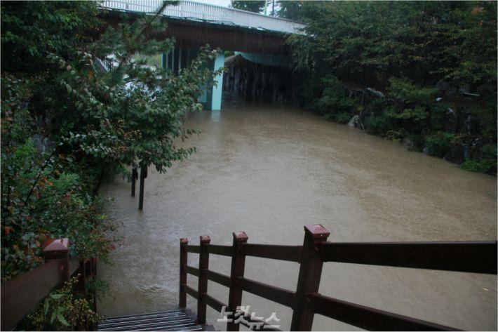 6일 오전 울산 남구 무거동 삼호 1교 주변 산책로가 침수돼 통제되고 있다.(사진 = 반웅규 기자)