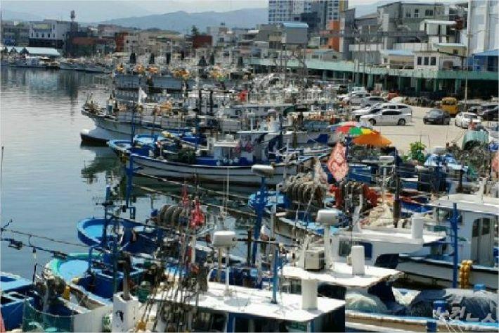 항구로 피항한 동해안 선박들. (사진=자료사진)