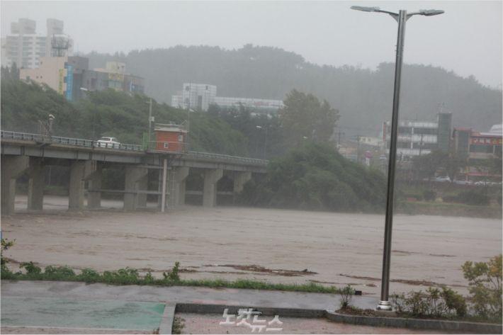 6일 오전 울산 남구 무거동 구삼호교 아래 태화강.(사진 = 반웅규 기자)