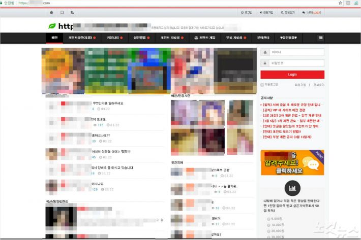 불법 음란물사이트 메인화면 (사진=대전지방경찰청 제공)
