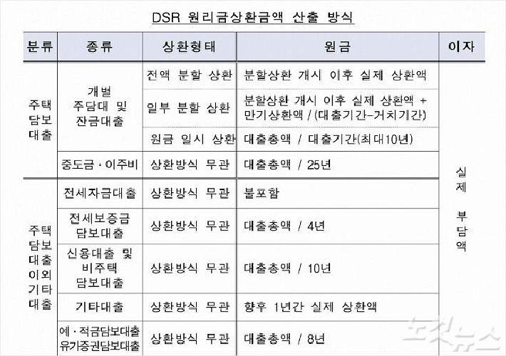 '역대급' 대출 규제 DSR, 자영업자·의사 가리지 않는다