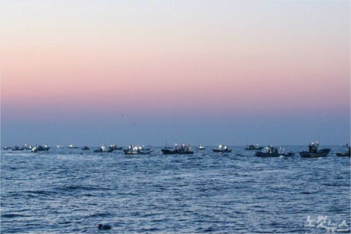 동해 최북단 저도어장으로 향하는 선박들. (사진=자료 사진)