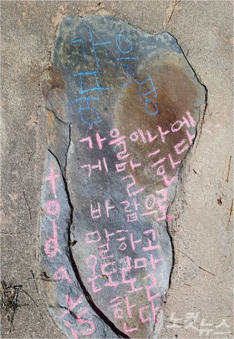 지난 10월 12일 죽왕초등학교 전교생이 송지호 둘레길 걷기 생태학습을 진행한 가운데 학생들이 느꼈던 점을 송지호 둘레길 바닥에 분필 그림과 시로 나타냈다.(사진=죽왕초 제공)