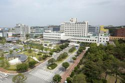 전북대병원에서 뇌사 40대 남성, 6명에 장기기증