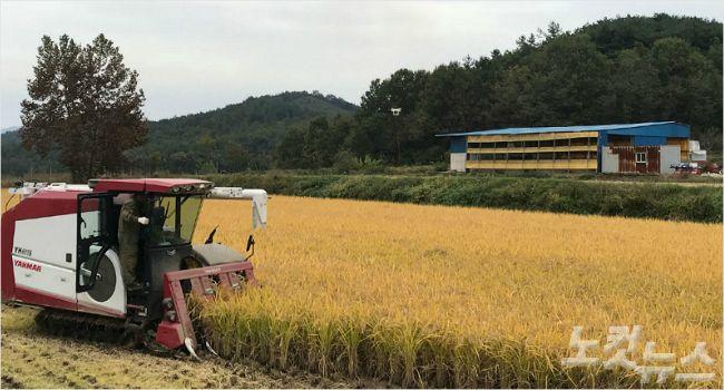 전남도, 2018년산 쌀 변동직불금 236억 원