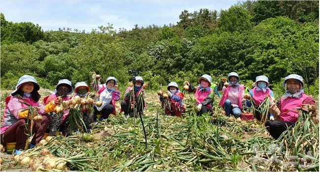 농협광주본부, 국민과 함께하는 농촌 일손 돕기