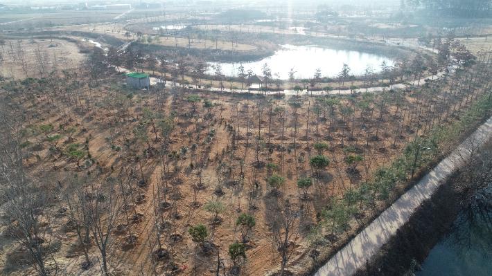 익산시의 아가숲이 들어설  유천생태습지. 익산시 제공