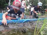 생태환경교육 활성화 사업 일본연수