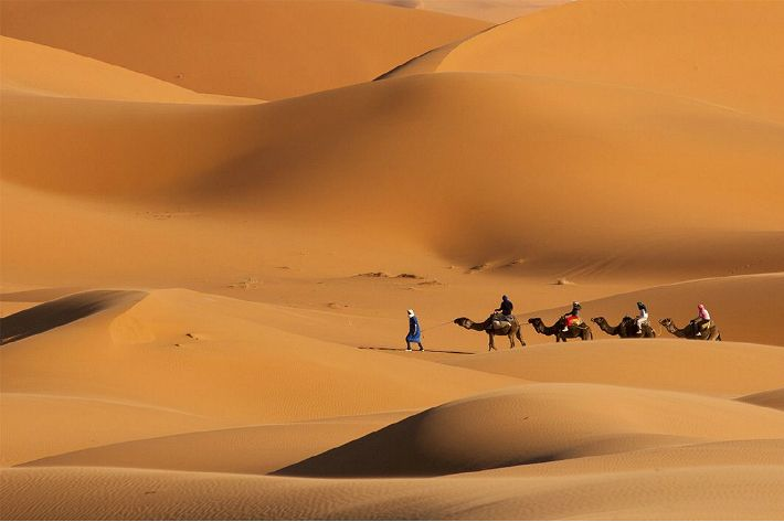 아프리카 여행의 또 다른 시작 '모로코'