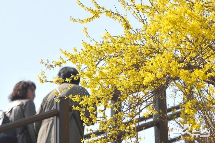 중국, 서울의 200개 공원에 반하다