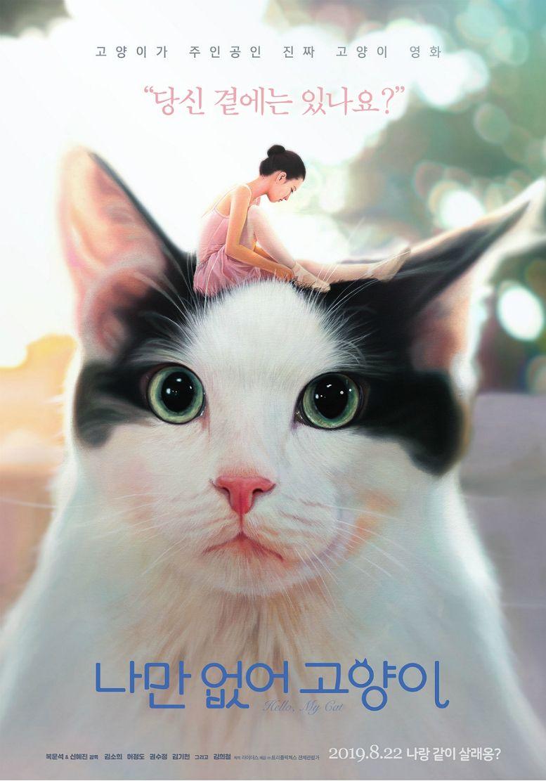 고양이는 사랑입니다