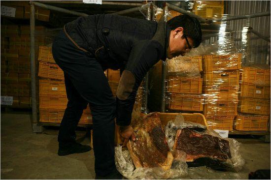 [Why뉴스] '울산 고래고기 사건', 왜 또다시 주목받나?