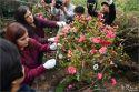 6명 생명 살린 10대 제주소녀 동백꽃으로 피어나다