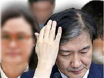[그래픽뉴스]조국 前장관 일가 주요 의혹 및 판결