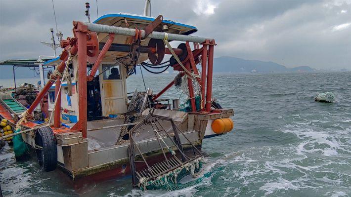 어업구역 벗어나 바지락 채취한 어선 7척 적발