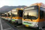 여름 휴가철 맞아 울산 시내버스 10.7% 감차 운행