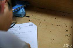 올해 수능 2015 새 교육과정 첫 적용…시험형식 등 지난해와 동일