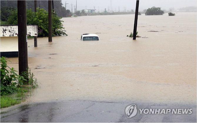 """""""금산 인삼밭 40%가 물에 잠겨...3일 뒤엔 다 썩어나간다"""""""
