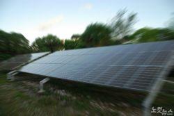 피해자만 800여 명…700억대 대규모 태양광 분양사기