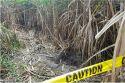[단독]필리핀 사탕수수밭 살인 주범 필리핀서 검거