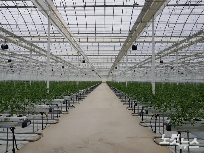 디지털·저탄소 전환 및 지역뉴딜로 새로운 농업·농촌 만든다