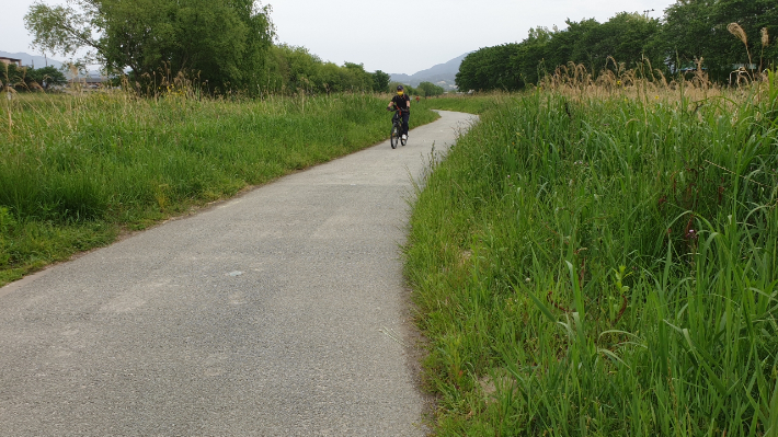 전주시, 삼천 산책로 자전거·보행자 도로 분리