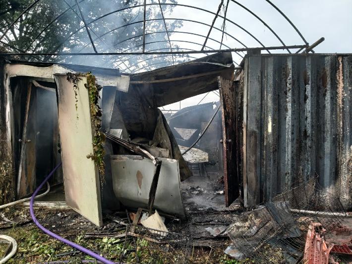 '모기향 피우다'…농장 화재로 개·고양이 80마리 죽어
