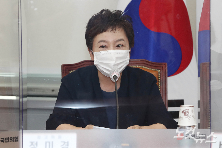 """정미경 """"'경인선' 외치던 김 여사…文은 몰랐을까?"""""""