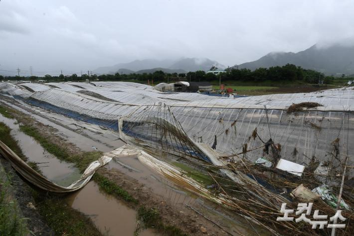11일 장기간 이어진 기록적인 폭우로 큰 피해를 입은 전남 구례군 한 마을에 비닐하우스가 무너진 모습. 이한형 기자