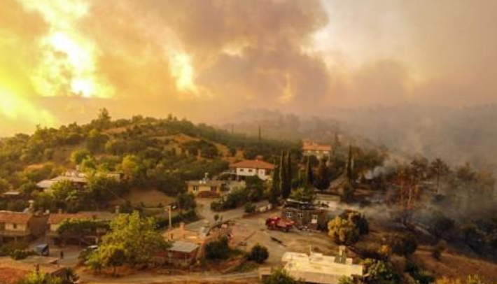 터키, 대규모 산불로 8명 사망…방화용의자 1명 체포