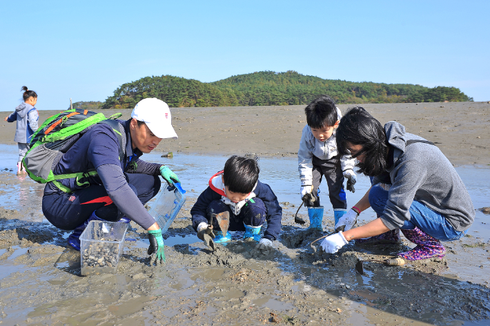 세계유산 '갯벌' 어업활동, 국가무형문화재 지정