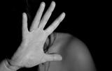 성폭력 보호시설 실태